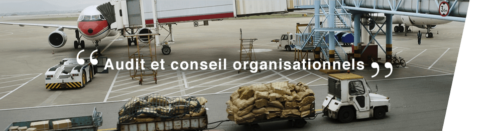 audit-conseil-organisationnel